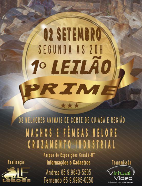 1º Leilão Prime LF Leilões