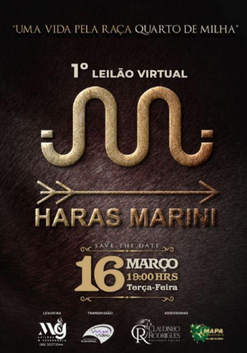 1º Leilão Virtual Haras Marini - Produção