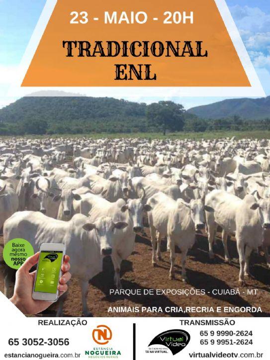 Leilão Tradicional Estância Nogueira