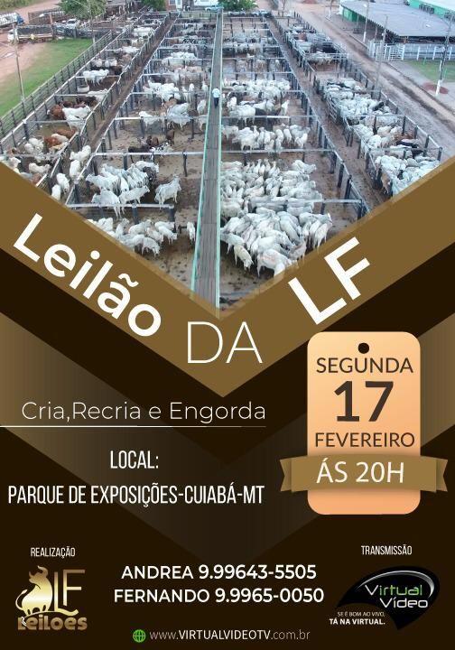 Leilão LF