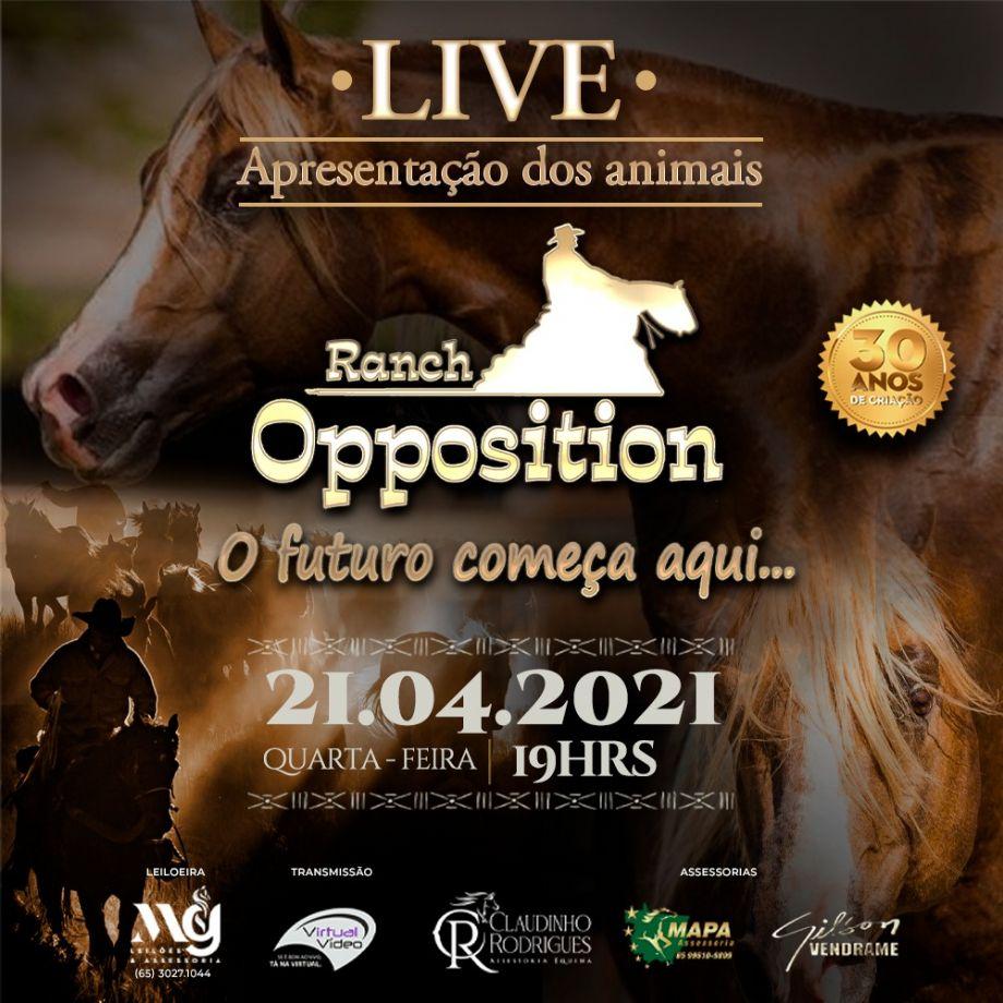 LIVE - Apresentação dos Animais - 1º Leilão Ranch Opposition & Amigos
