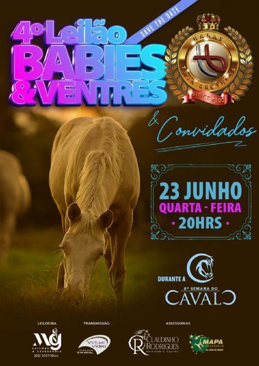 4 Leilão Virtual Babies e Ventres HTB - Semana do Cavalo