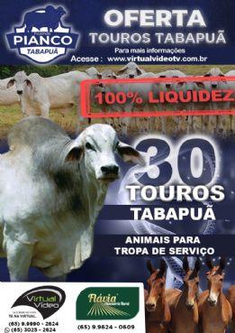 TOUROS TABAPUÃ